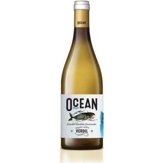 Ocean Experiencias Blanco Verdil 2017